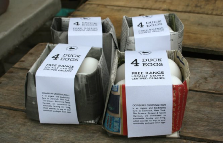 Newspaper egg carton
