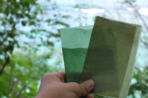 Seaweed based packaging