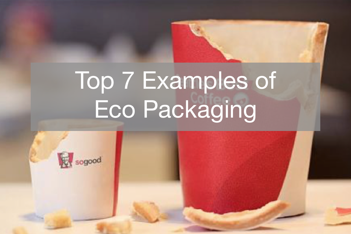 Top 7 Examples of Eco Packaging